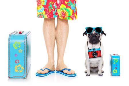 vacation summer: pug dog and owner ready to go on summer holidays vacation with luggage and bags , isolated on white background