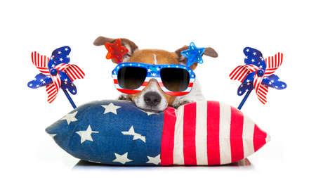 Jack-Russell-Hund feiert 4. Tag Urlaub Juli Unabhängigkeit mit amerikanischen Flaggen und Sonnenbrille, isoliert auf weißem Hintergrund