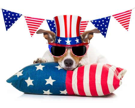independencia: Jack Russell perro que celebra el 4 de julio Día de la Independencia con banderas y gafas de sol americano, aisladas sobre fondo blanco