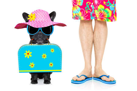 dog and owner with bag and luggage ready for a summer holiday vacation together , isolated on white background