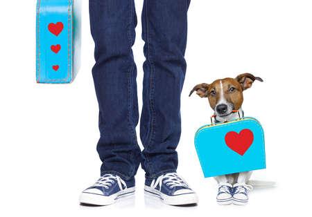 voyage: chien et le propriétaire avec le sac et bagages prêts pour un séjour de vacances ensemble, isolé sur fond blanc