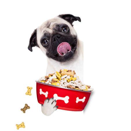 paciencia: Barro amasado de hambre que sostiene el plato de comida y lamer con la lengua, aislado en fondo blanco Foto de archivo