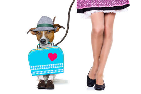 wiesn: bavarian german jack russell  dog with  bag and luggage, with owner and a leash , isolated on white background , ready for the beer celebration festival in munich