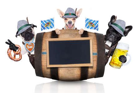 lederhose: group or team of bavarian german dogs  with  gingerbread and hat, behind barrel,  isolated on white background , ready for the beer celebration festival in munich Stock Photo
