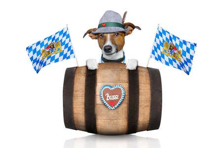beerfest: bavarian german jack russell dog with  gingerbread and hat, behind barrel,  isolated on white background , ready for the beer celebration festival in munich Stock Photo
