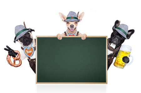 lederhose: group or team of bavarian german dogs  with  gingerbread and hat, behind placard or banner ,  isolated on white background , ready for the beer celebration festival in munich