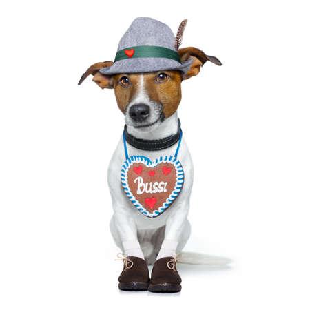 octoberfest: bávaro jack russell perro alemán con pan de jengibre y sombrero, aislado en fondo blanco, listo para la celebración del festival de la cerveza en Munich Foto de archivo