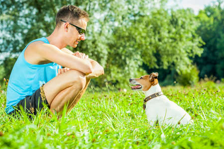 jack russell dog with owner ,  training outside and outdoors at the park or meadow, looking into  each others eyes