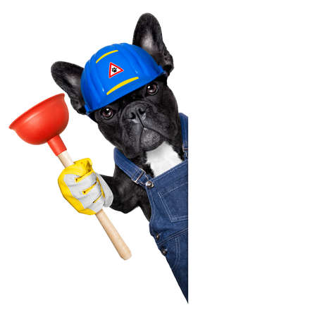 handyman  french bulldog dog worker with helmet and plumber wrench  in paws, ready to repair, fix everything at home, isolated on white background, beside banner placard