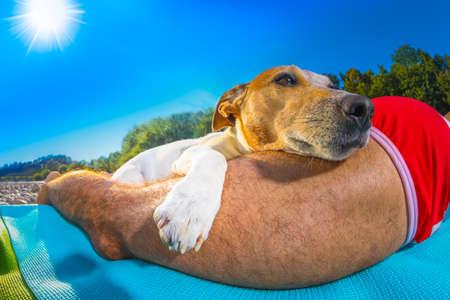 Jack-Russell-Hund und Halter Sonnenbaden ein, die eine Siesta unter einer Palme, auf Sommerurlaub Urlaub am Strand