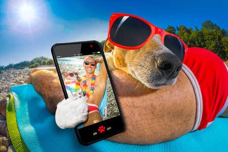 Jack-Russell-Hund mit Besitzer lustig roten Phantasie trägt eine Sonnenbrille, die auf Hängematte oder Liegestuhl Liege liegen zusammen als Liebhaber oder Freunde, in den Sommerferien Urlaub ein selfie zusammen nehmen