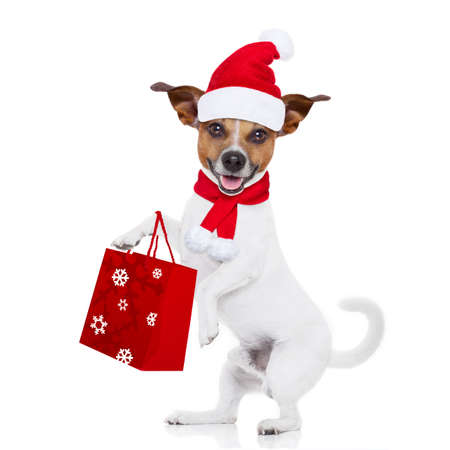 discount banner: jack russell dog with red  christmas santa claus hat  for xmas holidays with shopping bag for sale discounts