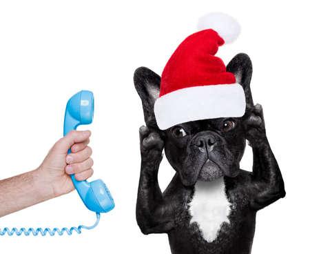 escuchar: bulldog francés con el sombrero rojo de Navidad de Santa Claus para las vacaciones de navidad Invitación del teléfono o teléfono
