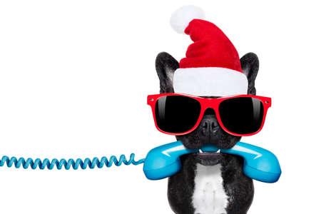 gente comunicandose: bulldog francés con el sombrero rojo de Navidad de Santa Claus para las vacaciones de navidad Invitación del teléfono o teléfono