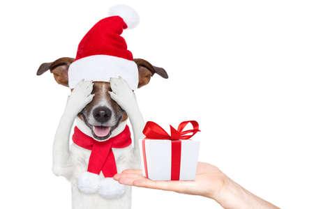 Jack Russell hond met rode kerst hoed van de Kerstman voor Kerstmis vakantie schuilplaats met gesloten ogen, opgewonden en verrast om het geschenk of huidige doos
