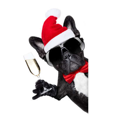 funny glasses: santa claus french bulldog dog toasting xmas cheers with champagne glass and victory or peace fingers, for christmas holidays  isolated on white background