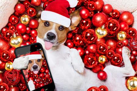 Jack russell terrier cane con cappello di Babbo Natale per le vacanze di Natale che poggiano su uno sfondo palle di natale prendere una selfie con lo smartphone o la fotocamera