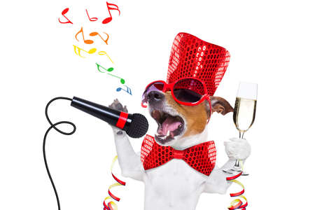 jack russell dog celebrating new years eve with champagne glass and singing out loud, isolated on white background