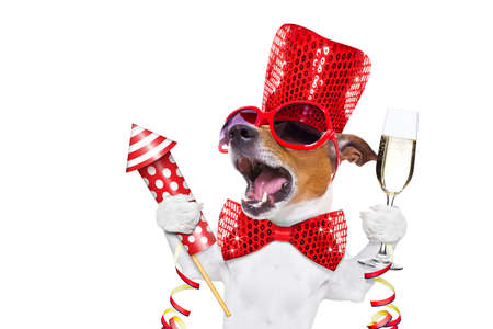 jack russell dog celebrating new years eve with champagne  glass and singing out loud, with a fireworks rocket , isolated on white background