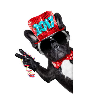 french bulldog dog celebrating 2017 new years eve with champagne isolated on white background beside a banner or placard, peace and victory fingers