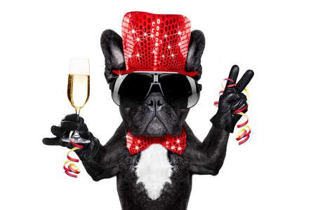 Franse bulldog hond vieren nieuwe jaar vooravond met champagne glas, overwinning en vrede vinger, geïsoleerd op een witte achtergrond Stockfoto