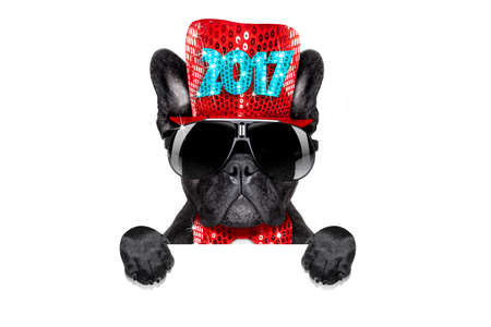 greeting season: french bulldog dog celebrating 2017 new years eve with champagne isolated on white background behind a banner or placard, Stock Photo
