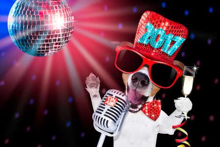 Jack Russell hond vieren nieuwe jaar vooravond met champagne glas en zingen hardop, geïsoleerd op donkere zwarte partij nachtleven club met retro oude microfoon Stockfoto
