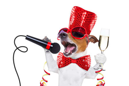 greeting season: jack russell dog celebrating new years eve with champagne  glass and singing out loud, with a  microphone , isolated on white background