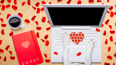 business: dog office worker in  love on happy valentines day,  typing in a  pc computer laptop,  isolated on desk  background,full of red rose petals,dating online on a chat
