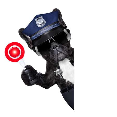 Dogane Polizia CANE SU CON segnale di stop e la mano, isolato su sfondo bianco vuoto, dietro la bandiera nera o cartello Archivio Fotografico - 70082865