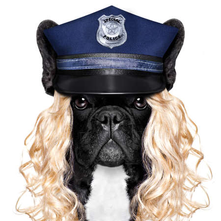 policewoman dog ON DUTY WITH stop sign and hand , isolated on white blank background wearing a blonde funny wig Stock Photo