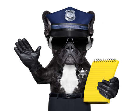 controlling: POLICE DOG ON DUTY WITH ticket fine and hand , isolated on white blank background, behind black banner or placard Stock Photo