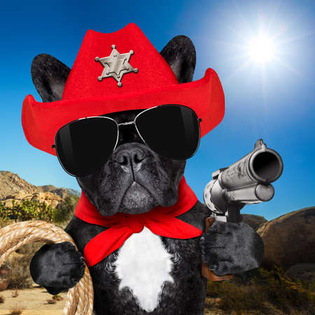 western cowboy sheriff   french bulldog dog with rope , red scarf and pistol outside in the desert, wearing red american hat