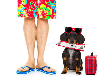 funny glasses: dachshund sausage dog and owner ready to go on summer vacation with flight airline ticket and luggage or bag to the side , isolated on white background, wearing sunglasses