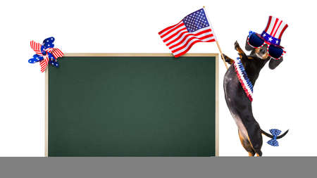 happy holidays: dachshund sausage dog waving a flag of usa and victory or peace fingers on independence day 4th of july, banner or placard blackboard to the side