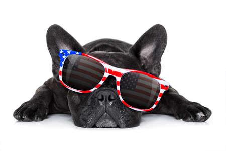 french bulldog dog celebrating  independence day 4th of july with  sunglasses,  isolated on white background