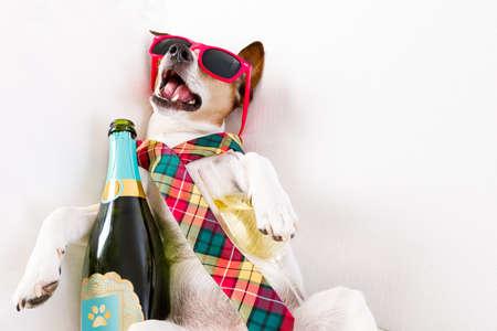 Dronken jack russell terrier hond rust of slapende kater met hoofdpijn, met fles en glas, dragen van een zonnebril en das
