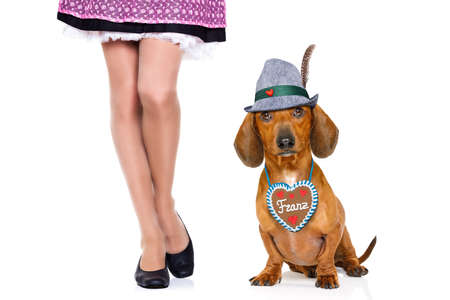 bavarian dachshund or sausage  dog with  gingerbread with owner  isolated on white background , ready for the beer celebration festival in munich,
