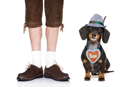 funny glasses: bavarian dachshund or sausage  dog with  gingerbread with owner  isolated on white background , ready for the beer celebration festival in munich,