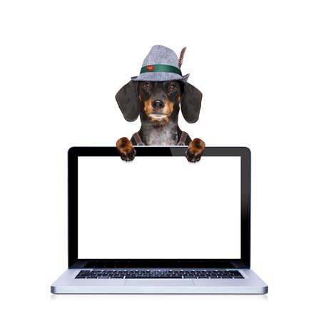 octoberfest: perro salchicha o dachshund bávaro detrás de la pantalla del ordenador portátil de la computadora portátil pc, listo para el festival de la celebración de la cerveza en Munich