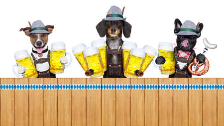 pretzel: bavarian german row or group  of dogs with  pretzel, beer mug ,flag , sausage,  and gingerbread heart, isolated on white background , ready for the beer celebration festival in munich