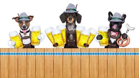 octoberfest: fila alemán de Baviera o grupo de perros con pretzel, jarra de cerveza, bandera, salchichas y pan de jengibre corazón, aislado en fondo blanco, listo para la celebración del festival de la cerveza en Munich