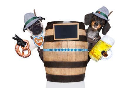 octoberfest: pareja bávara o grupo de perros detrás de un barril de cerveza tostado con tazas de cerveza Foto de archivo