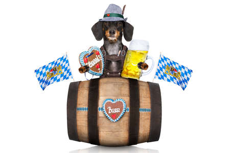 cup: bavarian dachshund or sausage  dog with  gingerbread and  barrel   isolated on white background , ready for the beer celebration festival in munich, Stock Photo