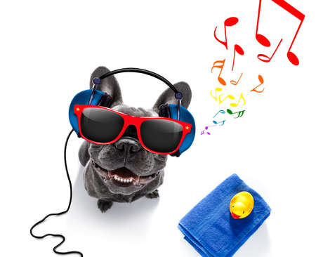 cool dj french bulldog dog listening or singing to music  with headphones and mp3 player, notes all around, isolated on white background and ready for summer vacation