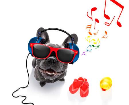 escuchar: fresco dj francés bulldog perro escuchar o cantar a la música con auriculares y reproductor de mp3, notas todo, aislado en fondo blanco y listo para las vacaciones de verano