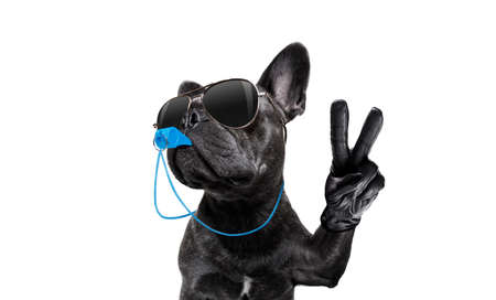 Árbitro árbitro árbitro perro bulldog francés soplando silbato azul en la boca Pentecostés paz o victoria dedos, aislado sobre fondo blanco