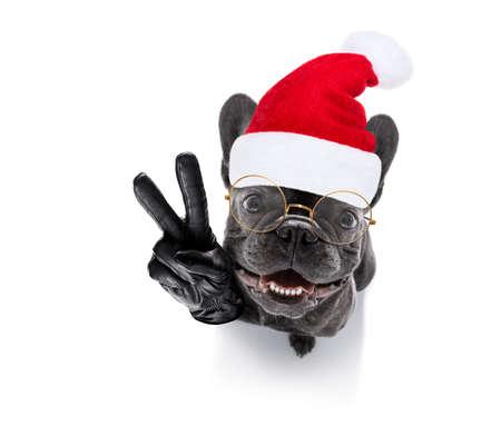 französische Bulldogge Weihnachtsmann Hund feiert Silvester mit Besitzer und Sektglas isoliert auf weißem Hintergrund, Weitwinkel-Ansicht