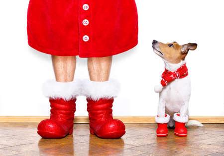 Kerst santa claus jack russell hond geïsoleerd op een witte achtergrond met rode laarzen voor de vakantie te wachten en te zitten