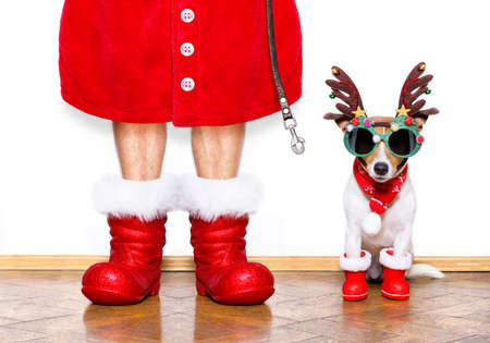 wait: christmas  santa claus  jack russell dog isolated on white background with reindeer  hat and red boots for the holidays waiting and sitting to go for a walk with leash Stock Photo